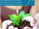 (Español) Guía dinámica de Ayudas e Incentivos para empresas – Región de Murcia