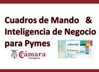 """Curso Taller  """"Cuadros de Mando & Inteligencia de Negocio para PYMES"""""""