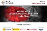 Programa de Diferenciación Competitiva para CEOs